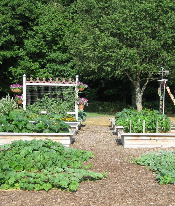 This is my garden. Eight raised beds and a 30 x 40 foot area for vines.