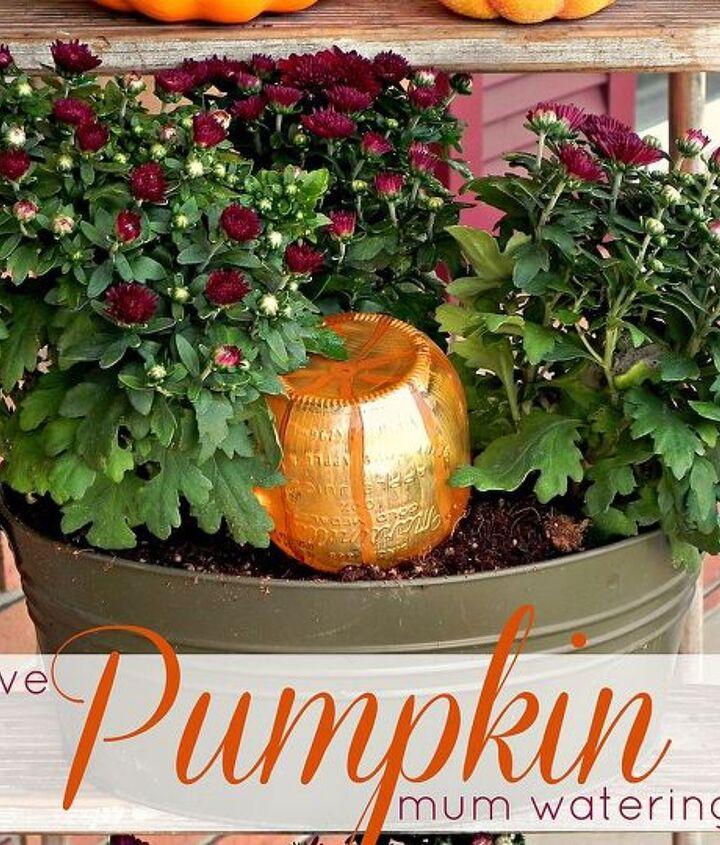 Decorative Pumpkin Mum Watering System