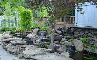 water gardens rochester ny fish ponds, landscape, ponds water features, Garden Ponds Rochester NY Fish Ponds Waterfall Renovation Remodel Replace in Monroe County Pittsford NY by Acorn Landscaping Certified Aquascape Contractor Landscape Designer Pond Installer of Rochester NY