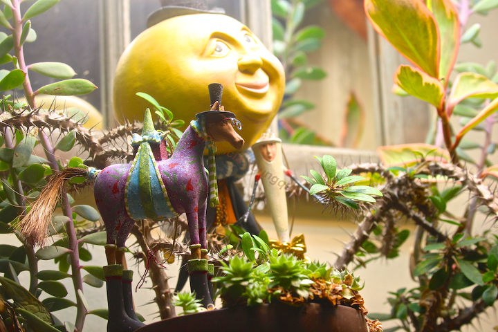 preserving the moment even in garden decor, flowers, gardening, halloween decorations, seasonal holiday d cor, succulents, A lone horse arrives EARLY for the Year of The Horse and startles Mr M I T M as well as Mizz Champagne