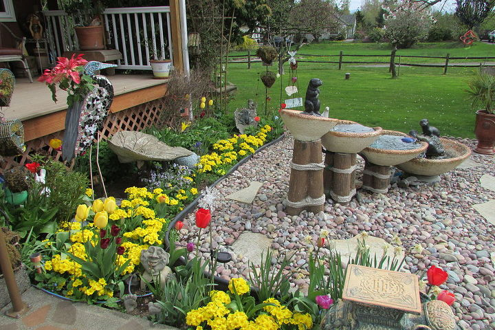 pulled out garden decor for spring, gardening, outdoor living