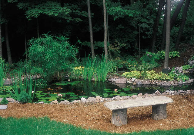 The shade and water provide a cool spot to relax on a hot summer day.