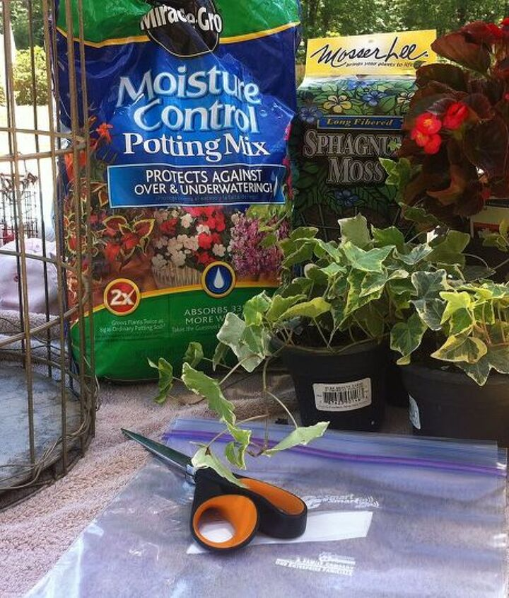 Birdcage, gold Rustoleum textured spray paint, freezer bags, moss, planting soil, ivy, and begonia.