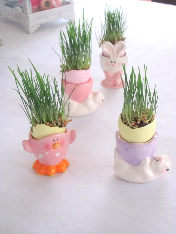 how to grow wheat grass for easter, crafts, easter decorations, seasonal holiday decor