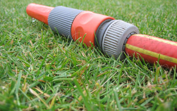 Reasons Why a Lawn May Perish or Get Brown Patches