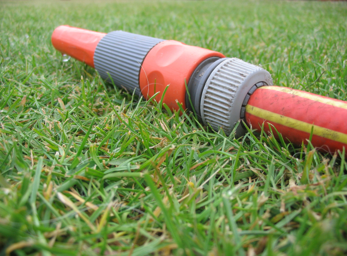 reasons why a lawn may perish or get brown patches, gardening, landscape