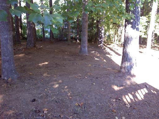 brick backyard firepit, i cleaned up all the debris in my backyard