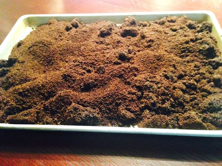 leftover coffee grounds, container gardening, gardening, repurposing upcycling