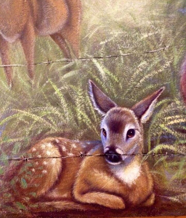 Fawn detailed