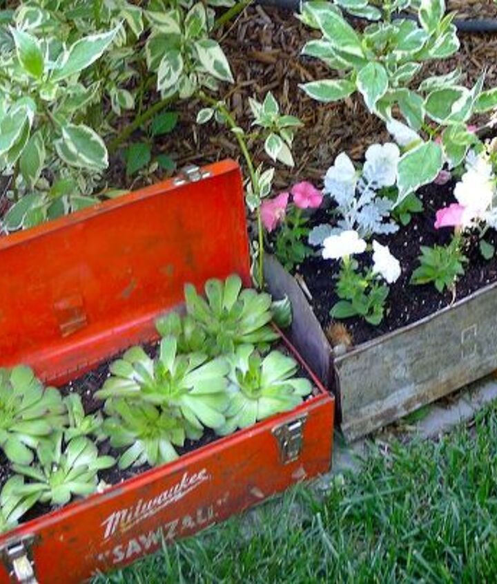 Have been admiring tool box planters so a couple of cheap finds and here we go.
