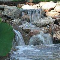 Neptune's Water Gardens