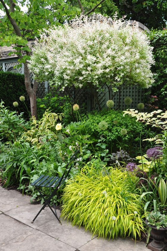 a romantic garden in the heart of the city, gardening