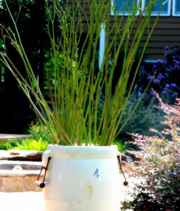 Spent DayLily Stems painted and placed in a container for a pop of color and added interest.