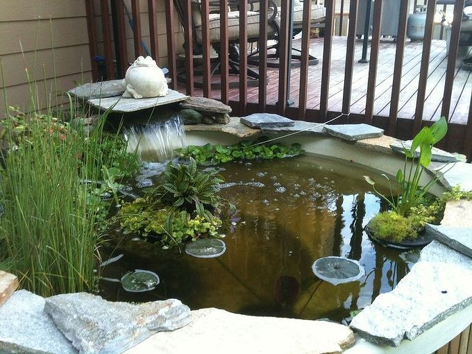 we have a hot tub turned into a pond great addition to my backyard paradise, outdoor living, ponds water features