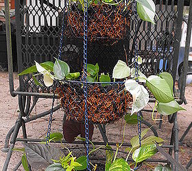 Repurposed Vegetable Holder Hanging Basket, Gardening, Repurposing  Upcycling, Finished Product May Add A