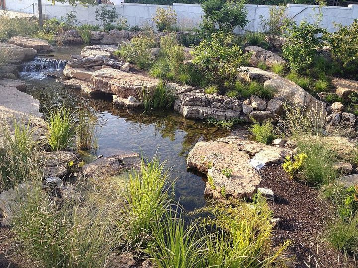 certified aquascape contractors aquascape ecosystem pond installation shedd, outdoor living, ponds water features, Only one year later