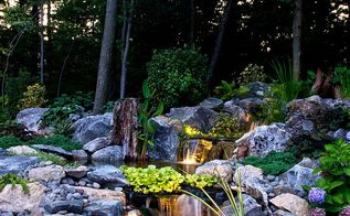 reclaim your land, landscape, outdoor living, ponds water features, First year photo
