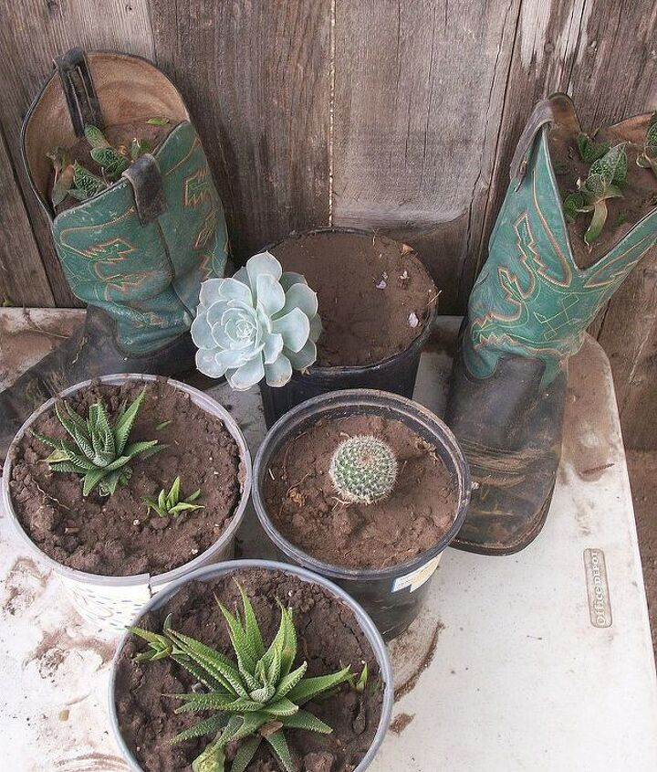 Used my son's old working boots as planters too.