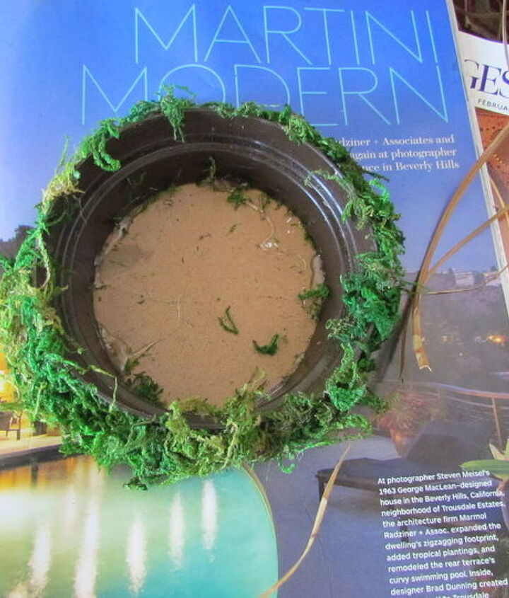 magazine planter, container gardening, crafts, flowers, gardening, repurposing upcycling, succulents