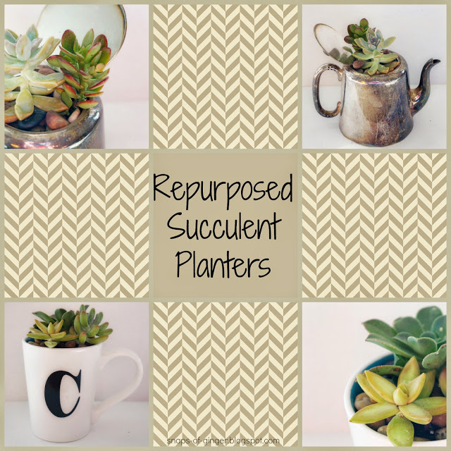 repurposed succulent planters, container gardening, flowers, gardening, repurposing upcycling, succulents