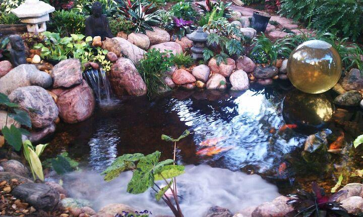 watergarden lifestyle, outdoor living, ponds water features