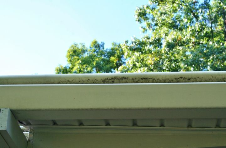 More mold on the gutters.