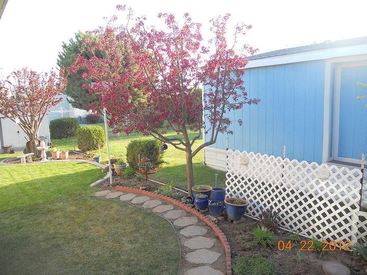 q posting my little garden help new thread, gardening, Oh Ok I get it now