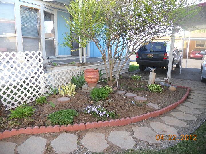 q posting my little garden help new thread, gardening, YUUUPP
