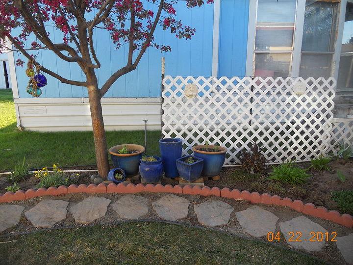 q posting my little garden help new thread, gardening, Those problem pots