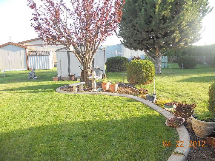 q posting my little garden help new thread, gardening