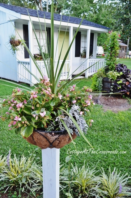 how to mount flower baskets onto wooden posts, curb appeal, diy, flowers, gardening, how to, repurposing upcycling, woodworking projects, A winning combination of dracaena begonias dusty miller ivy and vinca has bloomed all summer