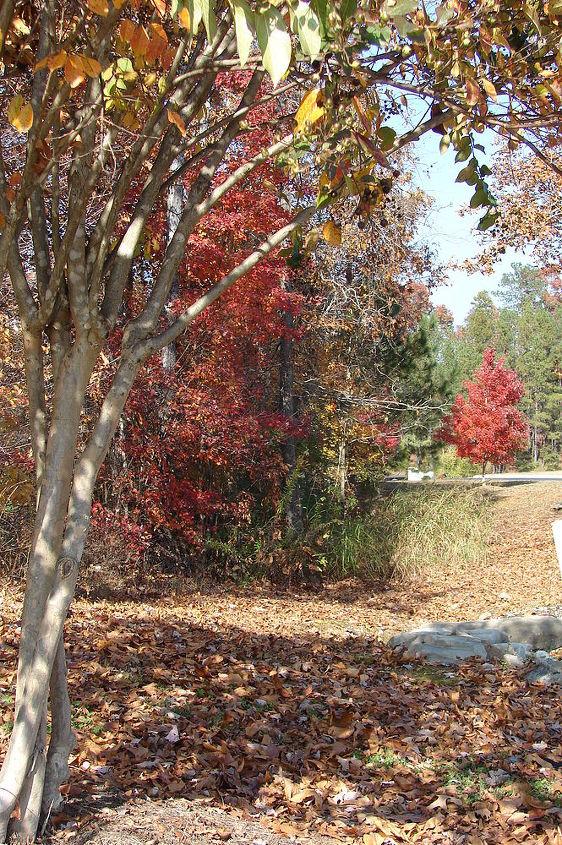 more fall in rural north alabama, outdoor living, seasonal holiday decor