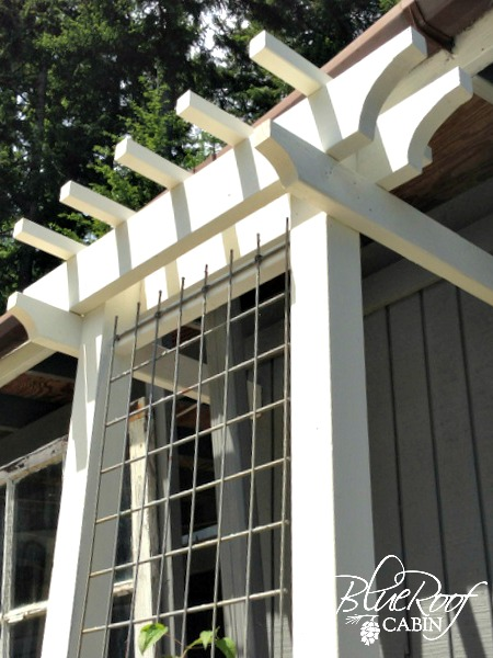 garden trellis design. easy garden trellis  diy outdoor living woodworking projects Add architectural interest with Easy Garden Trellis Hometalk