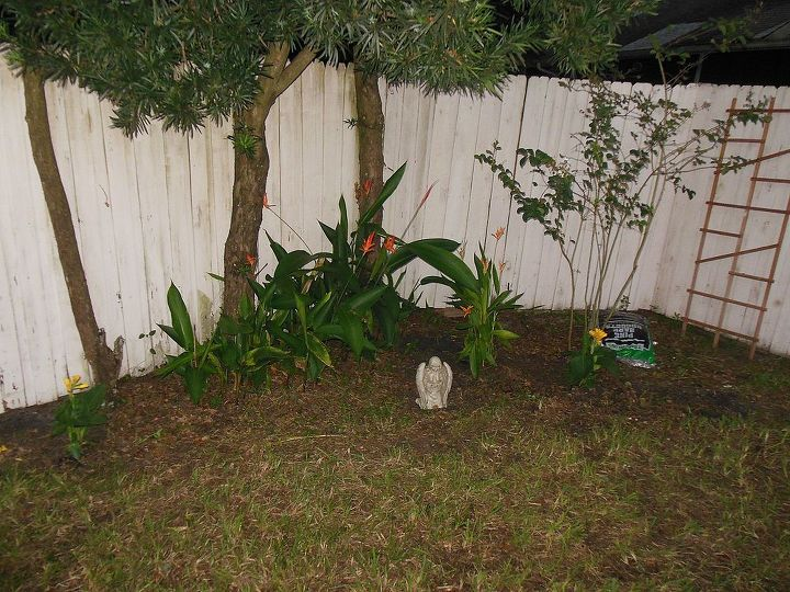 """Cleaned up the ugly corner, planted one more Heliconia and 2 yellow Cannas...this will be her """"Angel Garden"""""""