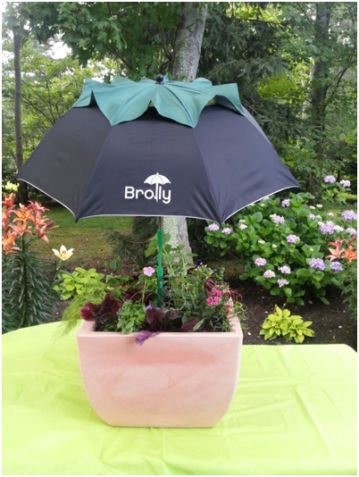 The umbrella really does a great job protecting against the various elements and is great to use when plants are young, as well.
