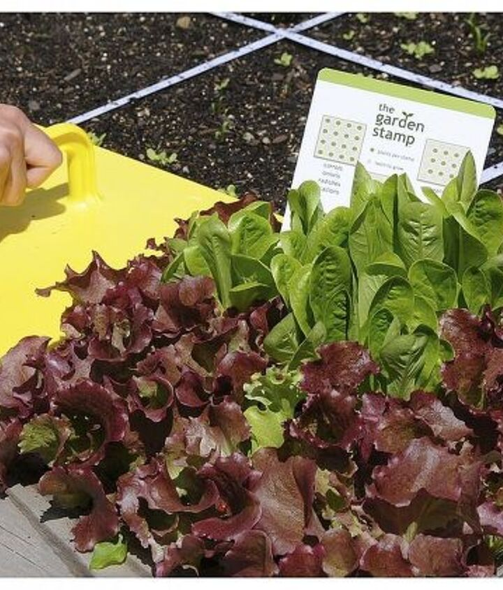 Garden Stamp: The Fastest Way to Plant a Raised Garden Bed