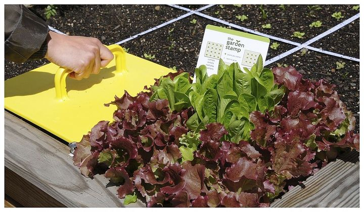 fastest way to plant a raised garden bed, gardening, raised garden beds, Garden Stamp The Fastest Way to Plant a Raised Garden Bed