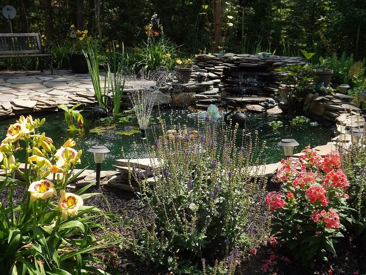 Water works, Water falls kit and liner I purchased at home depot a couple yrs ago. 10x16 pond. You need a larger liner. Pond plants are Water Iris, Water lily, hyacinths, Lily pads. Zebra grass.