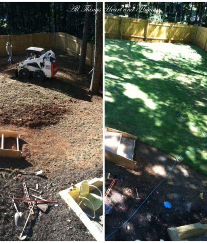 We had a terrible slope and too much shade to grow grass...soooo in came tons of dirt and down came some trees!