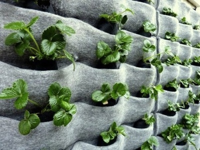 10 DIY Vertical Garden Ideas – Diy Vertical Garden Plans