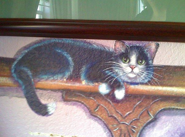 Cat on the shelf close up