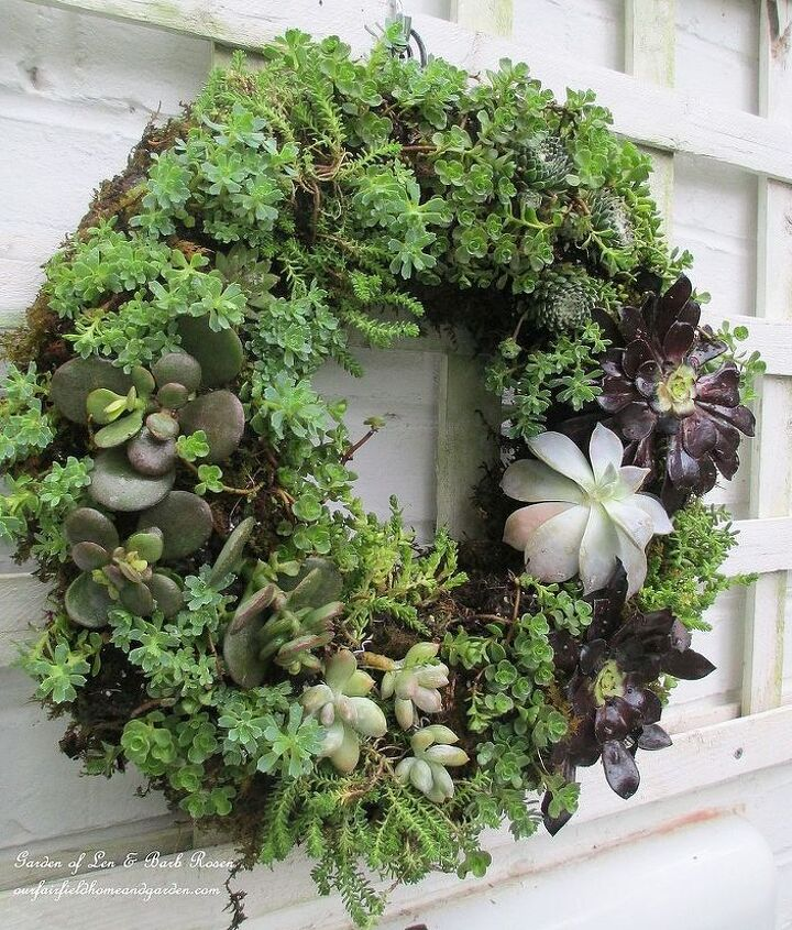 Completed Succulent Wreath