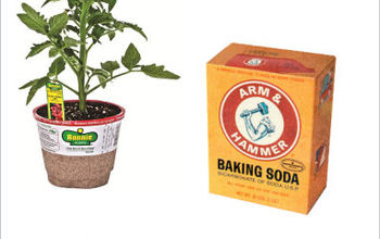 Sweeten Your Tomatoes With Baking Soda.