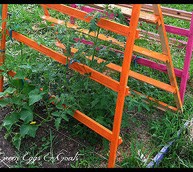 Fun Funky Free Garden Trellis Tomato Cage, Gardening, Homesteading,  Repurposing Upcycling, As