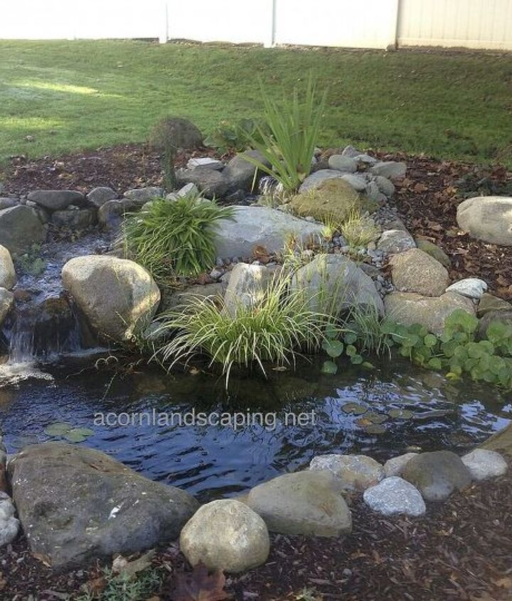 Small #fishpond with crystal clear water, #waterfalls, pond plants, #LED lighting, pond filtration, fish cave created for a family in #Webster,NY.