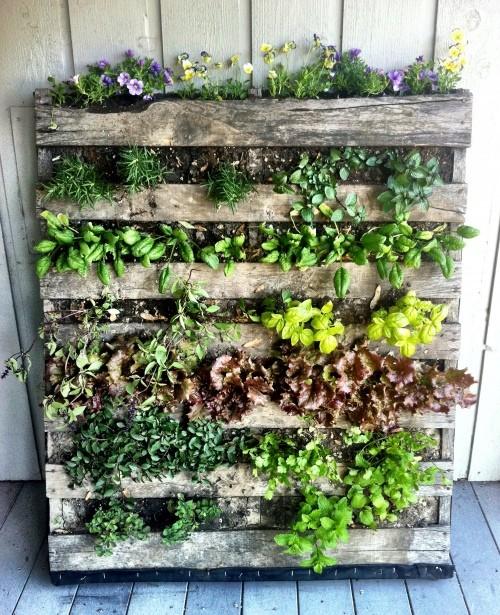 Make a Pallet Garden in 7 Easy Steps   Hometalk
