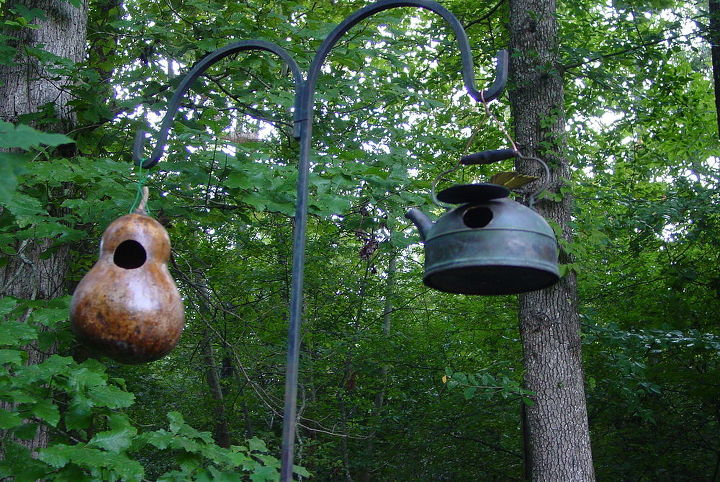 I sterilized the gourd and sprayed it with 3 coats of polyurethane to make it last a long time.  Get the tutorial at How-To: DIY Network How To Make A Gourd Birdhouse.  Next photos show you how I made the tea kettle house.