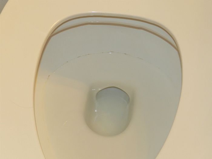 how to clean that stubborn toilet bowl ring for 25 cents, cleaning tips, go green, After attempting to clean with Comet and Liquid toilet bowl cleaner I still had this nasty hard water build up scuzzy ring