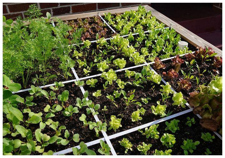 fastest way to plant a raised garden bed, gardening, raised garden beds
