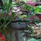 water gardens pondless waterfalls amp disappearing fountains are gaining, outdoor living, ponds water features